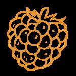 raspberry_icon